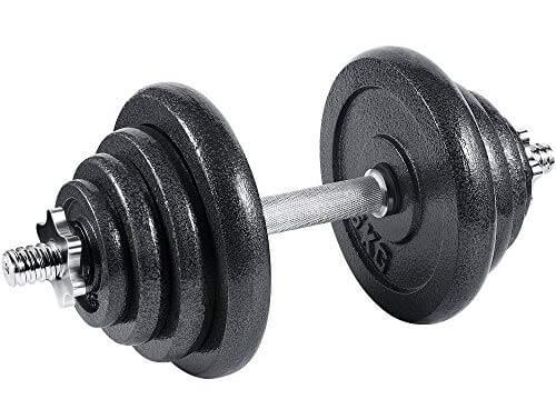 arteesol - Mancuernas Ajustables de Hierro Fundido Individual 10 kg, 15 kg, 20 kg, 30 kg, para Profesionales del Fitness (20kg)